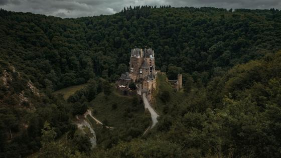 Eltz castle in the green forest wallpaper