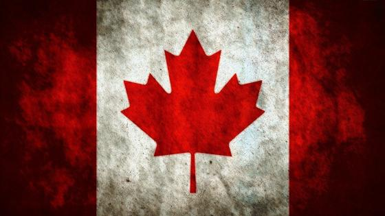 Canada maple leaf wallpaper