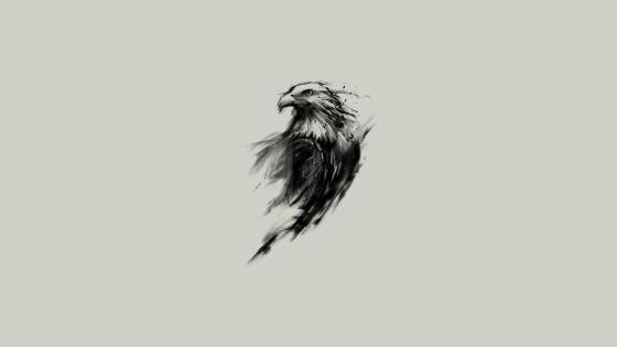Eagle sketch wallpaper