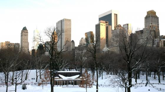 Central Park in the Winter wallpaper