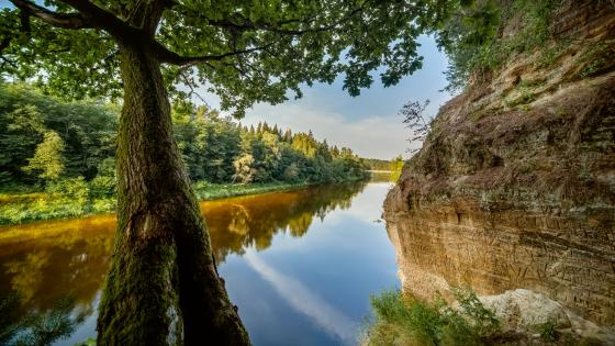 Gauja National Park, Latvia wallpaper