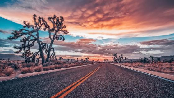 Desert road at sunset wallpaper
