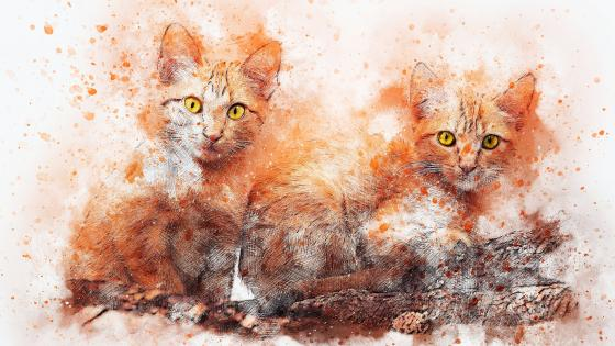 Ginger colored cats Painting Art wallpaper