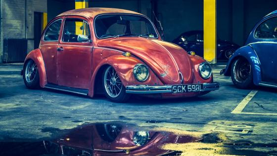 Red Volkswagen Beetle wallpaper