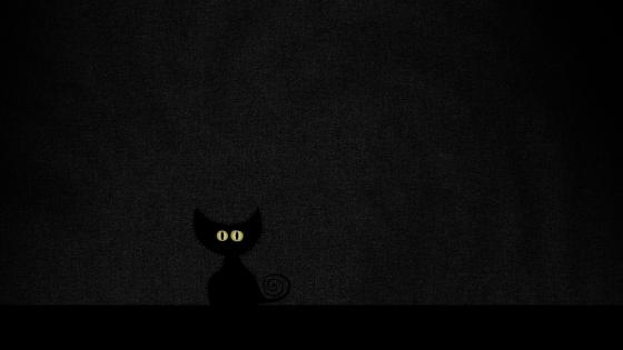 Black cat in the darkness wallpaper