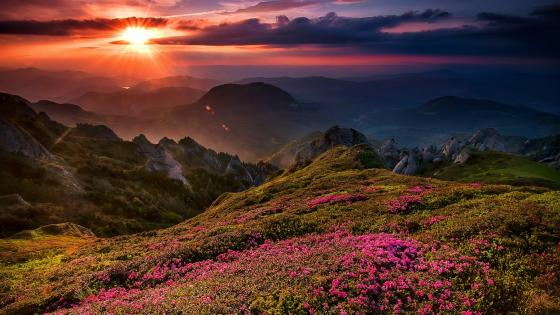 Sunset over the mountains wallpaper