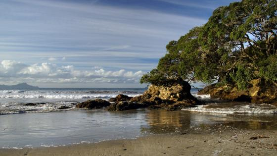 Langs Beach (Bream Bay, New Zealand) wallpaper