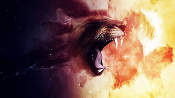 Lion roar wallpaper