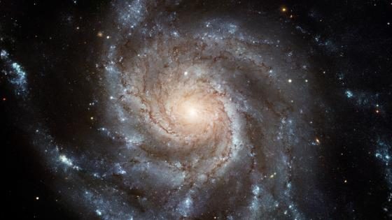 Stunning HD Image of Pinwheel Galaxy wallpaper