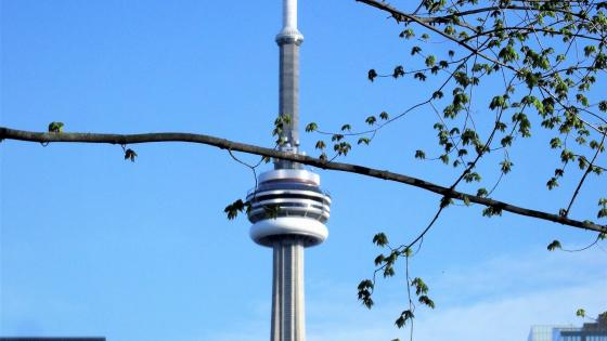 Cn tower wallpaper