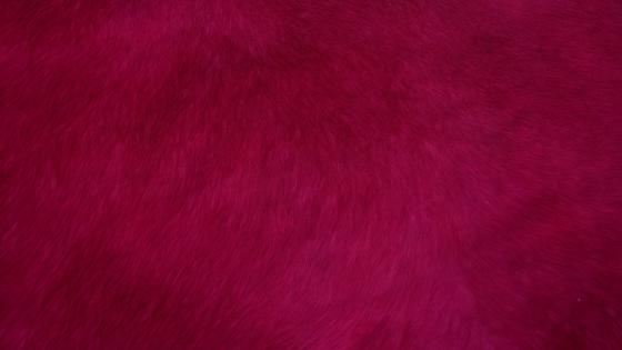 Red fur wallpaper