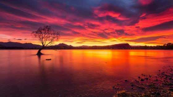 Lake Wanaka wallpaper