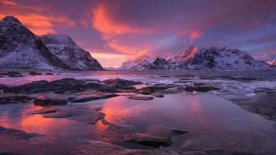 Pink sky over Lofoten wallpaper