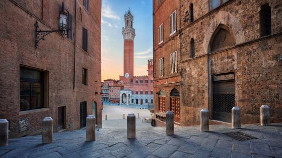 Palazzo Pubblico (Piazza del Campo, Siena, Italy) wallpaper