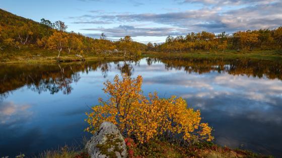 Autumn scenery reflection wallpaper