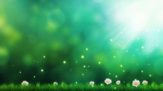Fantasy spring field wallpaper