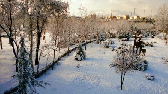 Winter in Isfahan, Iran wallpaper