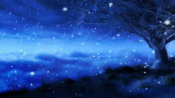 Starry winter night wallpaper