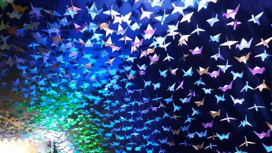colourfull wallpaper
