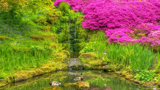 Wakehurst Palace botanical garden (England) wallpaper
