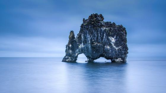 The majestic Hvítserkur Troll Rock Sea Stack wallpaper