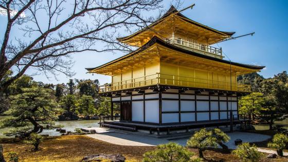Kinkaku-ji Temple (Golden Pavilion) wallpaper