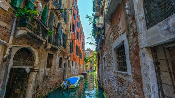 Canal view in Venice wallpaper