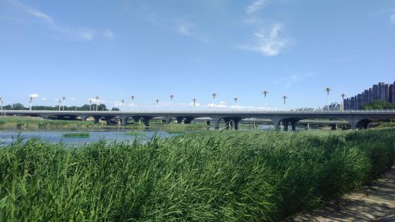 Bridge in Beijing wallpaper
