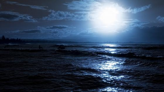 Night Sea wallpaper