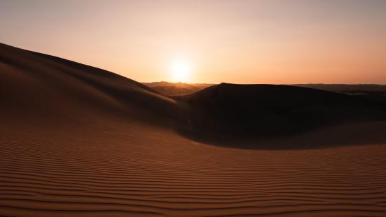 Desert dunes wallpaper