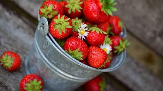 A bucket of strawberry wallpaper