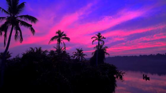 Kerala Backwaters, India wallpaper