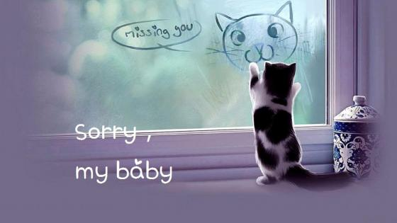 sorry, baby, I miss you wallpaper