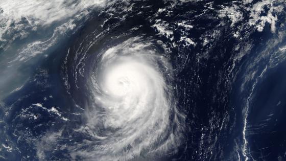 Typhoon Center wallpaper