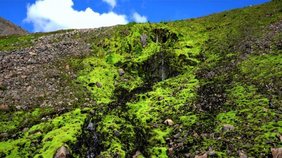 Mountain stream in Hornstandir wallpaper