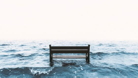 Bench in the water wallpaper