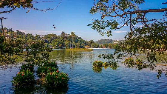 Bogambara lake, Kandy, Sri Lanka wallpaper