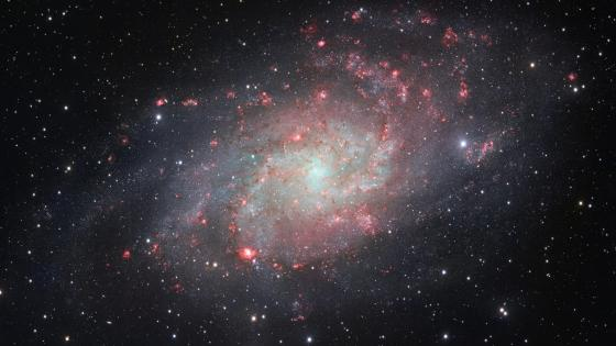 Messier 33 (Triangulum Galaxy) wallpaper