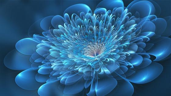 Blue glowing fractal flower wallpaper
