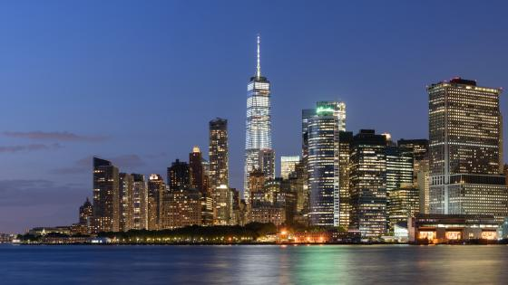 Lower Manhattan Skyline wallpaper