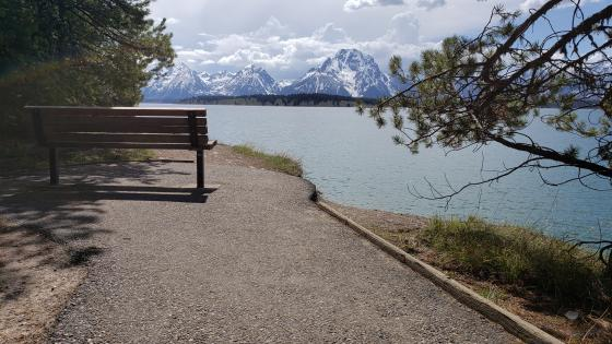 A bench overlooking the Mount Moran wallpaper