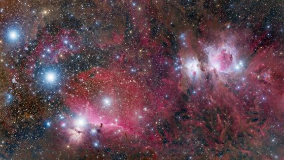 Realm of Orion: Mintaka to M42 Complex wallpaper