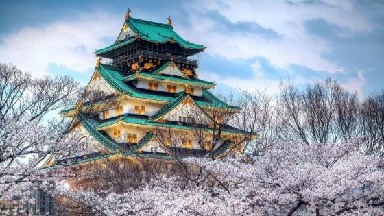 Osaka Castle at spring wallpaper