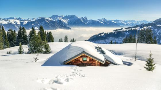 Log cabin under the snow wallpaper