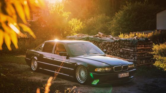 Black BMW Sedan park near pile of Firewoods wallpaper