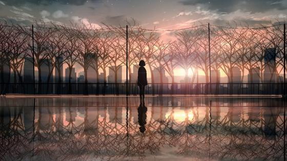 Anime sunset reflection wallpaper