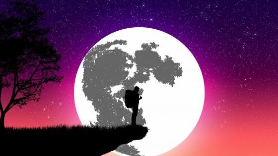 Wanderer in the moonlight wallpaper