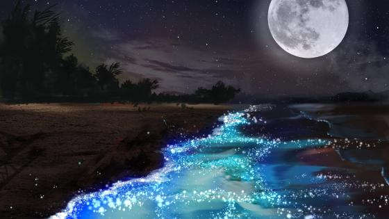 Fantasy night scenery wallpaper