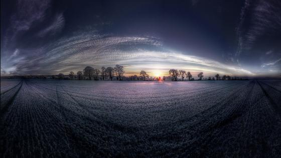 360 Photography of Field wallpaper