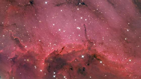 Pelican Nebula wallpaper
